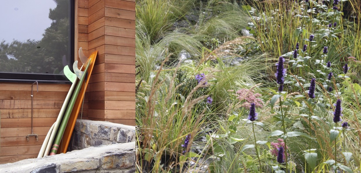 leonie-cornelius-garden-design-strandhill-shellssurfcafe