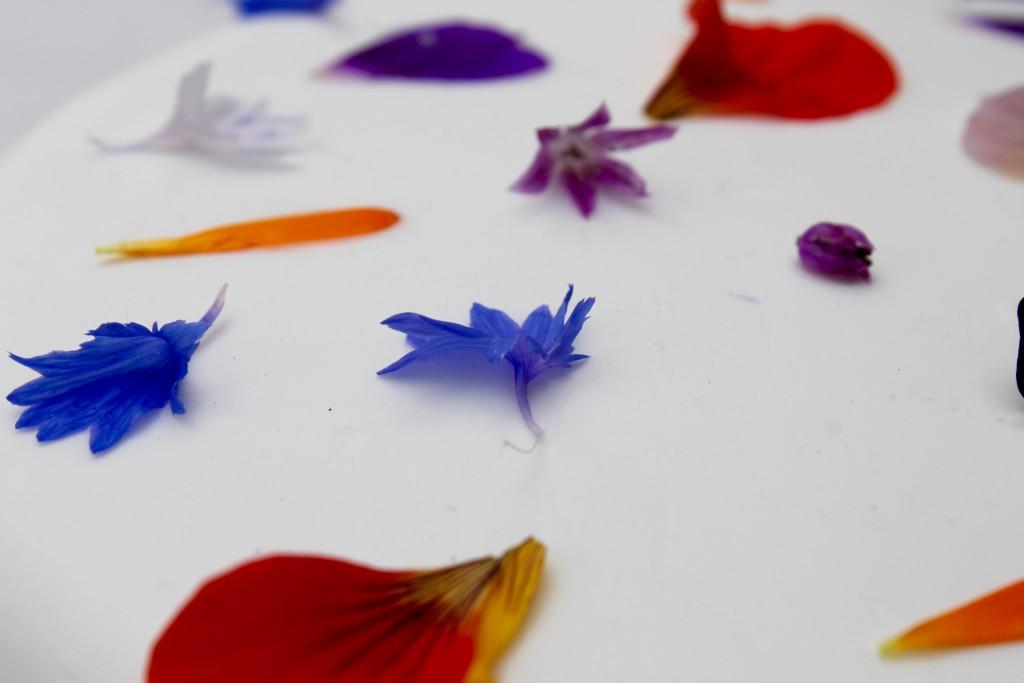 flower-cake-leone-cornelius