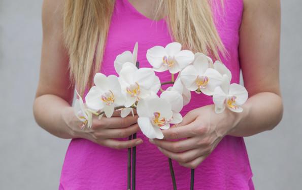 orchid-leonie-cornelius-colin-gillen-weekend-magazine