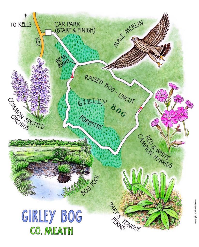 Girley Bog Map