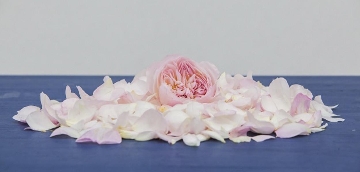 leonie-cornelius-rose-de-mai-colin-gillen-L'Occitane-chelsea-magee.4
