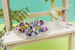 Weekend Projects | Edible Flower Fun