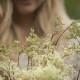 leonie-cornelius-meadowsweet-colin-gillen-mail-on-sunday-irish