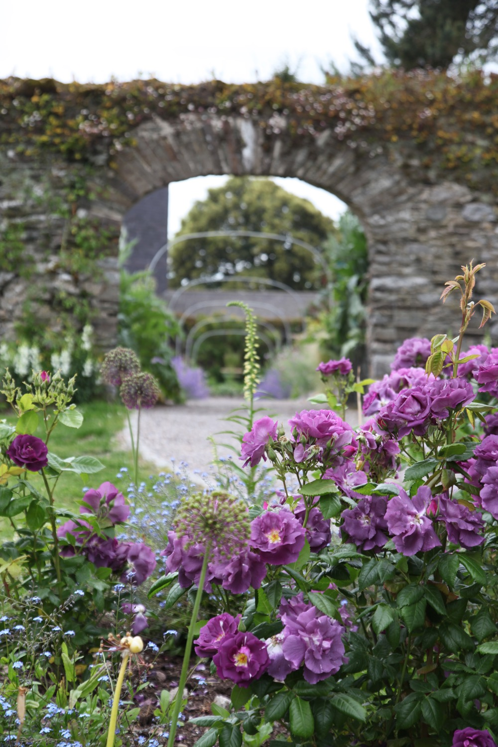 Summer walled garden arch