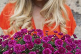 Chrysanthemum |  The September Garden gem