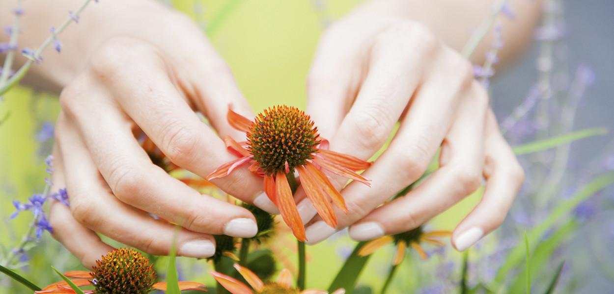 leonie-cornelius-colin-gillen-garden-designer-super-garden-rte-woodies-2