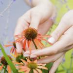 leonie-cornelius-colin-gillen-garden-designer-super-garden-rte-woodies-3
