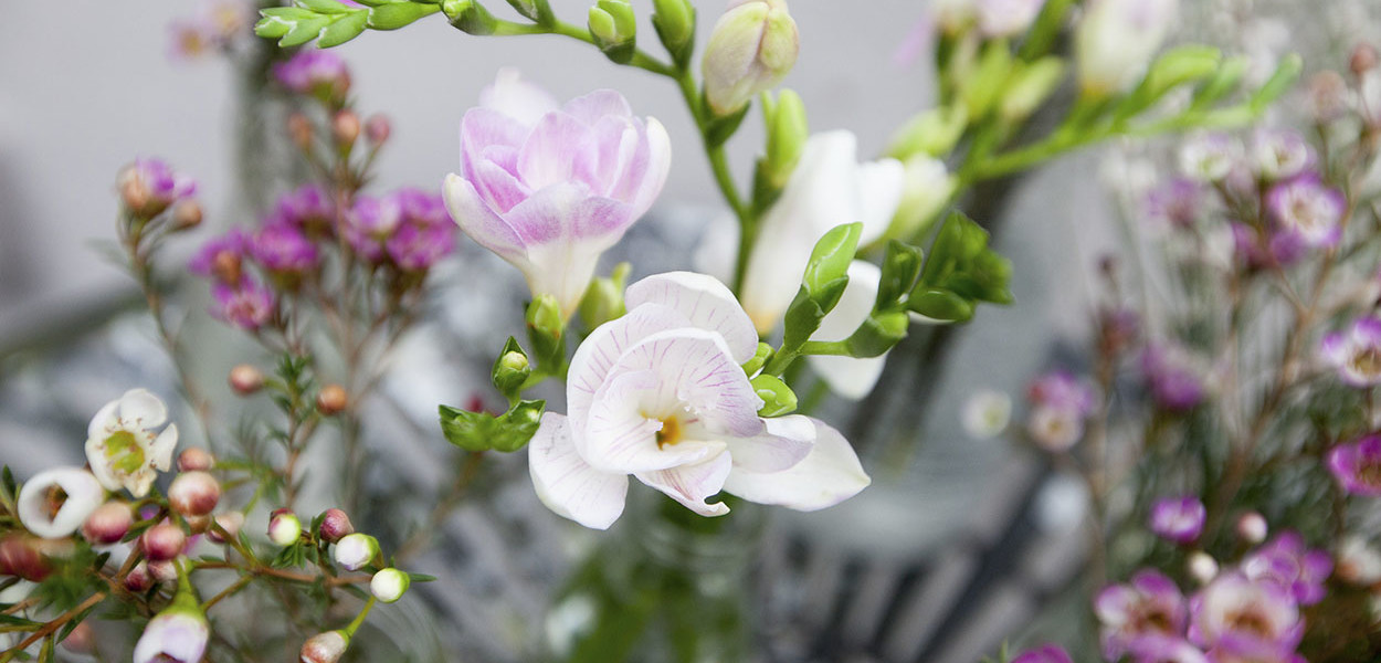 leonie-cornelius-colin-gillen-valentines-day-blog-supergarden-bloominthepark-woodies-5
