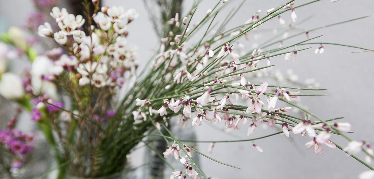 leonie-cornelius-colin-gillen-valentines-day-blog-supergarden-bloominthepark-woodies-6
