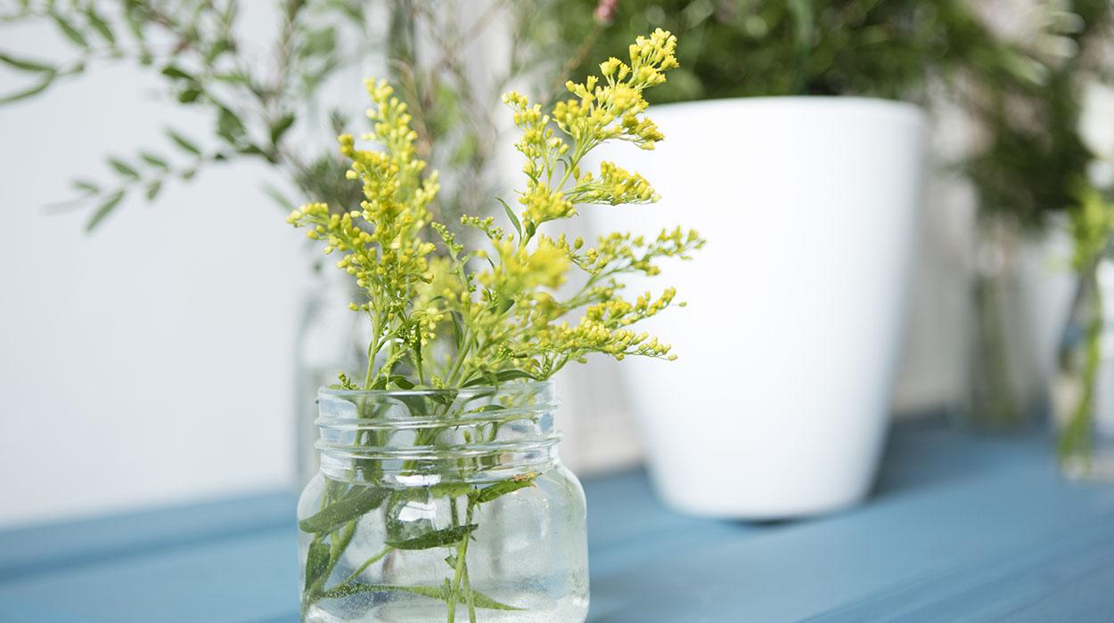leonie-cornelius-suzymccanny-supergarden-bloominthepark-dreamgardens-leoniecornelius-valentines-day-woodies-5