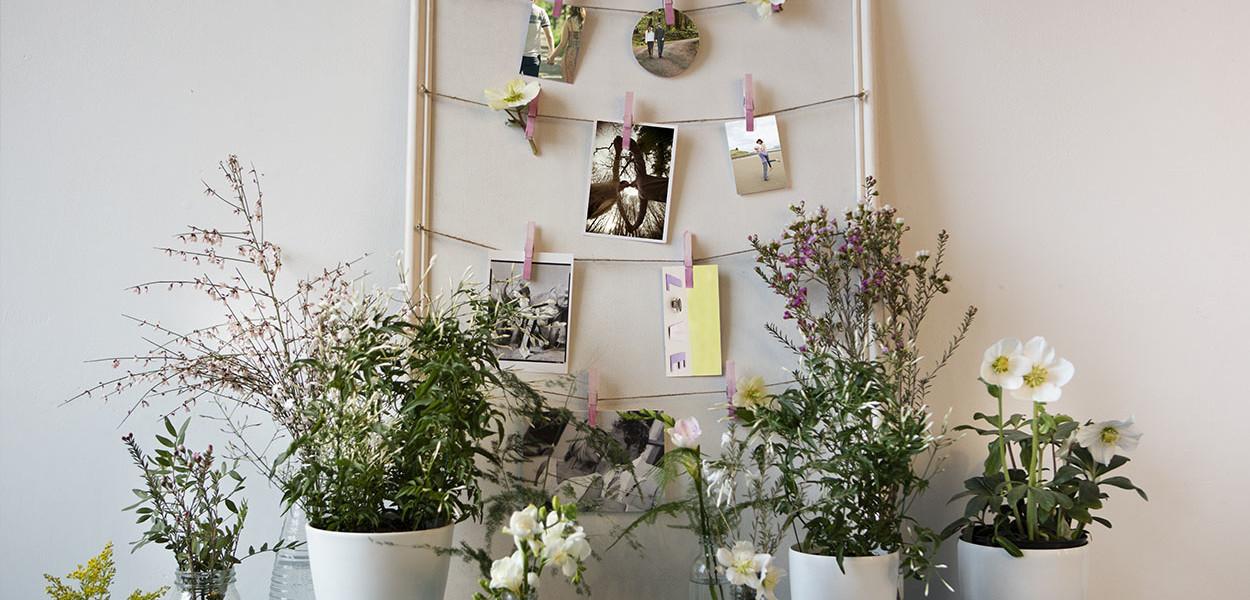 leonie-cornelius-suzymccanny-supergarden-bloominthepark-garden-woodies-1