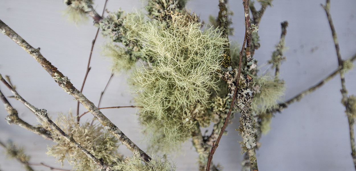 leonie-cornelius-wreath-christmas-lichen-3