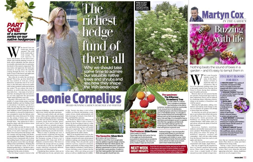 imos-magazine-gardens-1-7-18