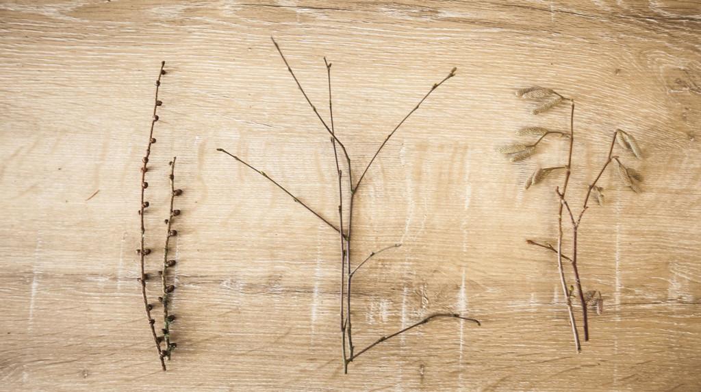 leonie-cornelius-garden-designer-ireland-christmas-crafts-6