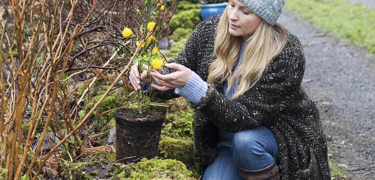 leonie-cornelius-winter-garden-designer-goal-martina-hamilton1