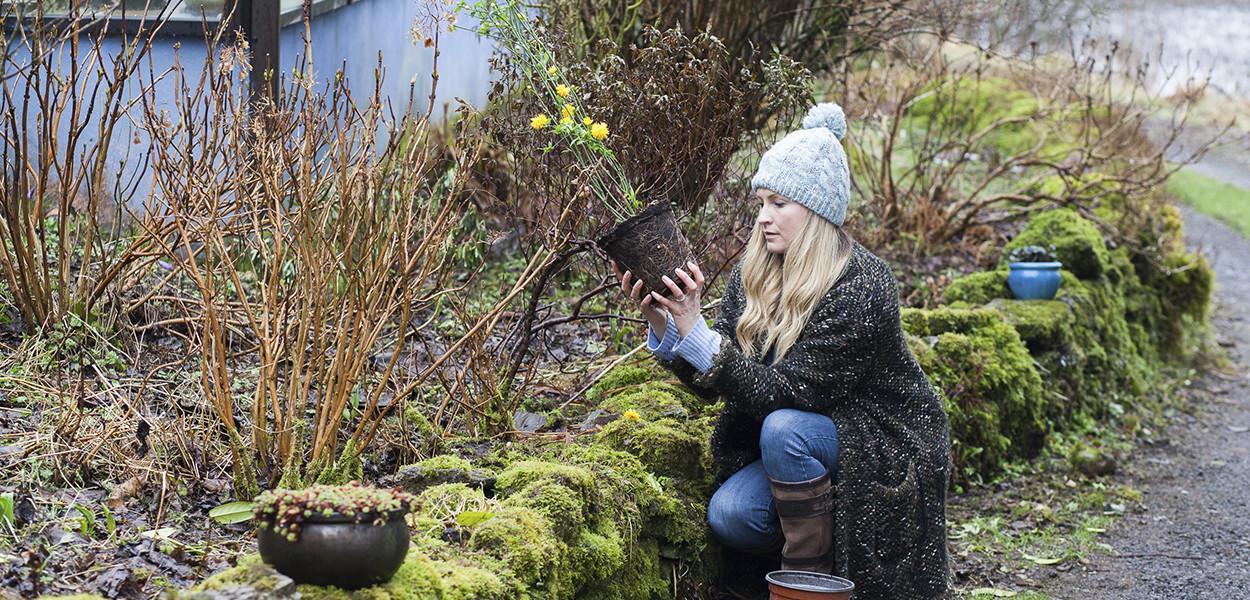 leonie-cornelius-winter-garden-designer-goal-martina-hamilton2