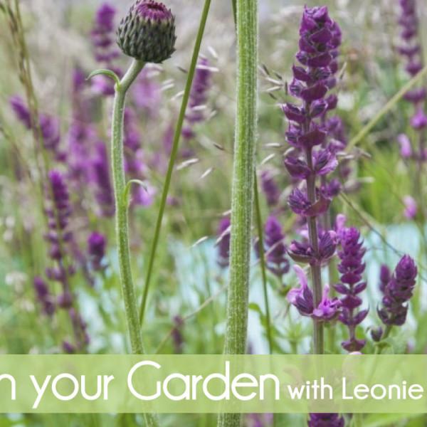 leonie-cornelius-garden-voucher-gift-idea-garden