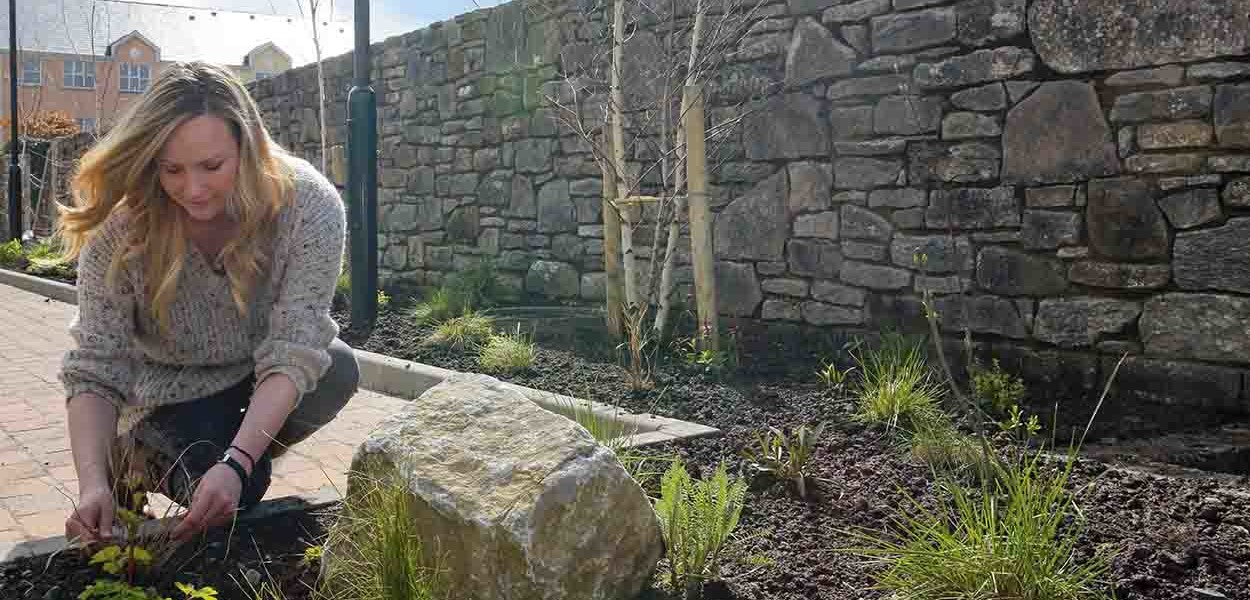 leonie-cornelius-w8village-manorhamilton-garden-design-5