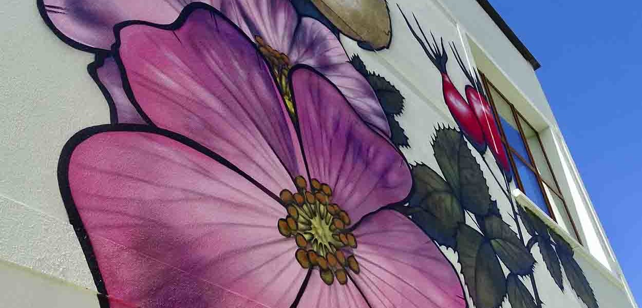 leonie-cornelius-w8village-manorhamilton-garden-design-8