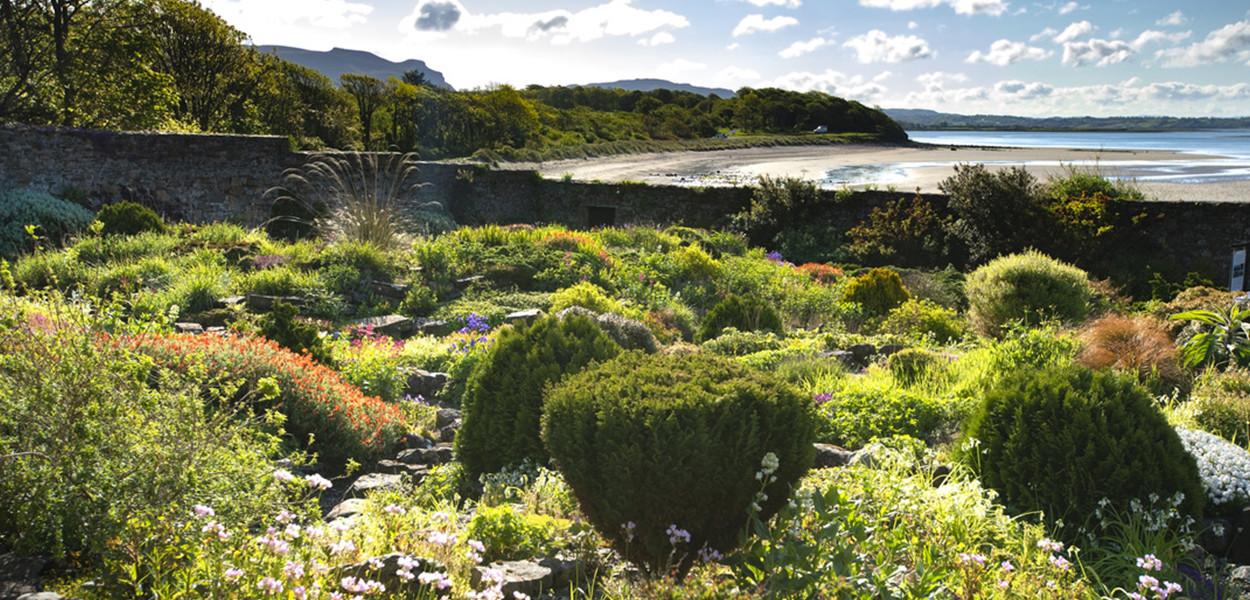 leonie-cornelius-lissadell-house-sligo-sligowhoknew-garden-design-3