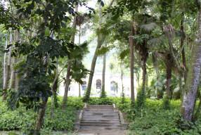 GARDEN VISIT – Parque Lage, Rio de Janeiro | 22.9606° S, 43.2120° W