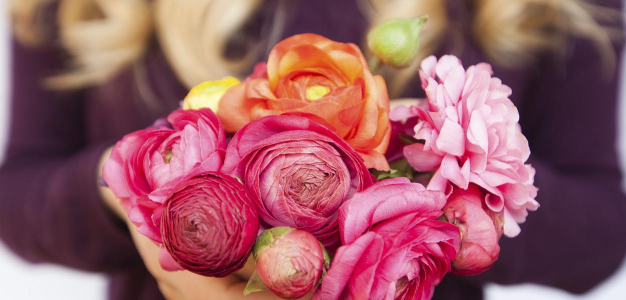 leonie-cornelius-ranunculus-mail-on-sunday-colin-gillen-Juvi-alhambra-garden-designer