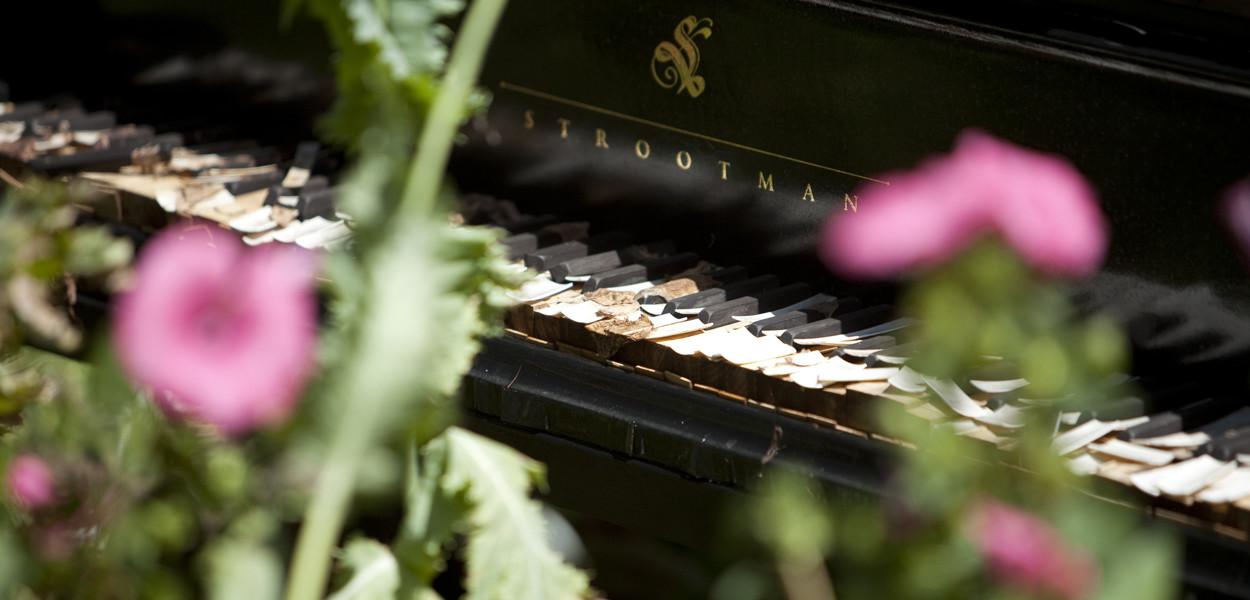 leonie-cornelius-mail-on-sunday-strootmann-landschapstarchitecten-colin-gillen-chaumont-sur-loire-billie-holiday-poppy.2