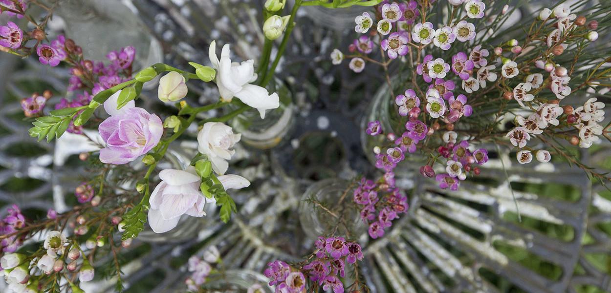 leonie-cornelius-colin-gillen-valentines-day-blog-supergarden-bloominthepark-woodies-3