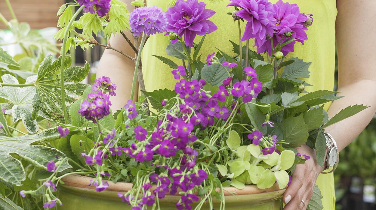 leonie-cornelius-garden-designer-ireland-horkans-bloom-chelsea-in-bloom-2