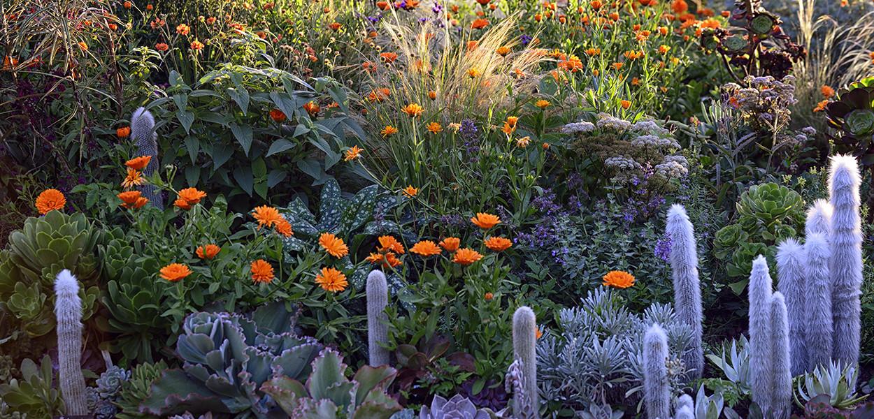 leonie-cornelius-jimi-blake-garden-design-huntigbrook1