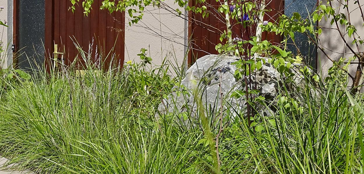 leonie-cornelius-w8village-manorhamilton-garden-design-2