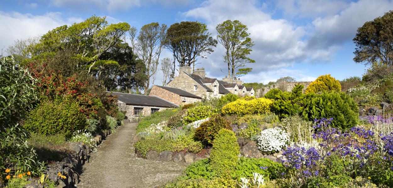 leonie-cornelius-lissadell-house-sligo-sligowhoknew-garden-design-6