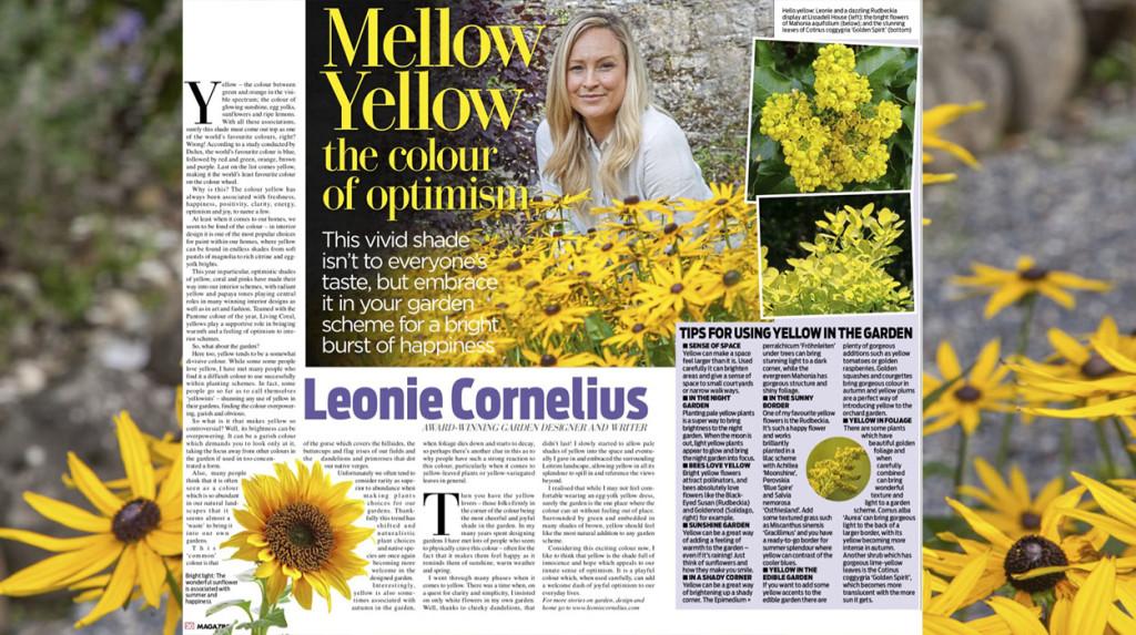 leonie-cornelius-rudbeckia1-yellow-garden-design-ireland-4